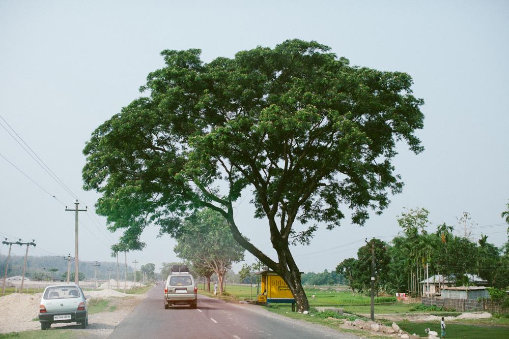 kathmandu_nepal_alecvanderboom (1 of 43).jpg