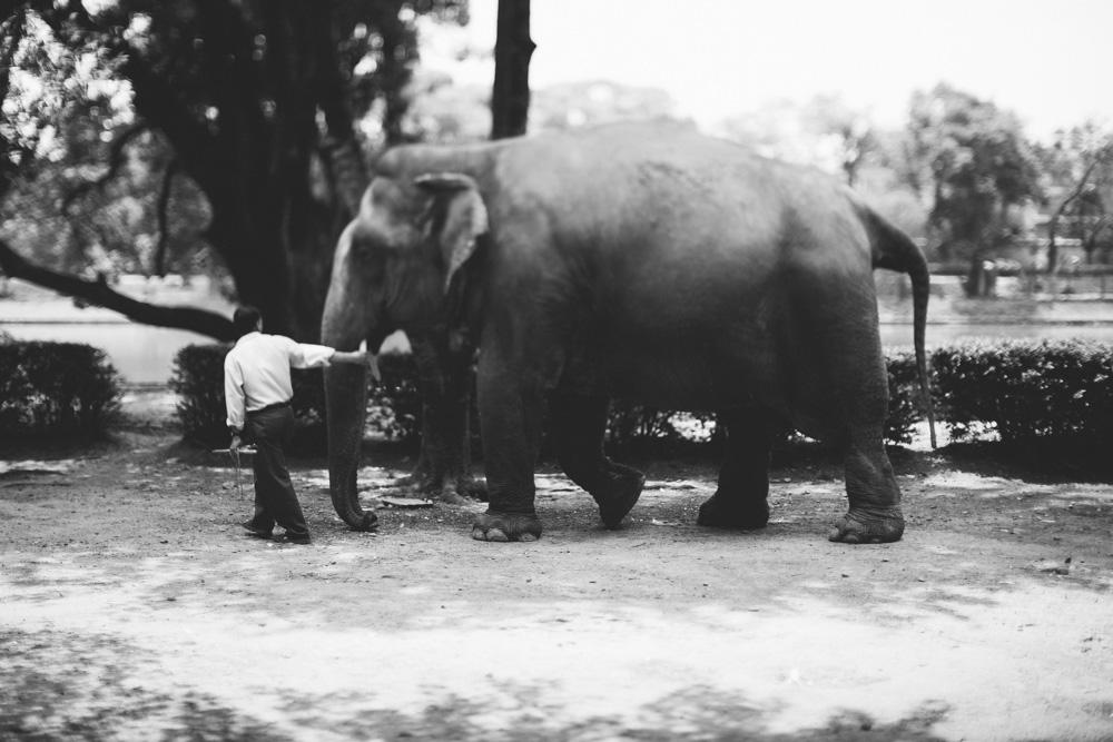 kathmandu_nepal_alecvanderboom (14 of 43).jpg