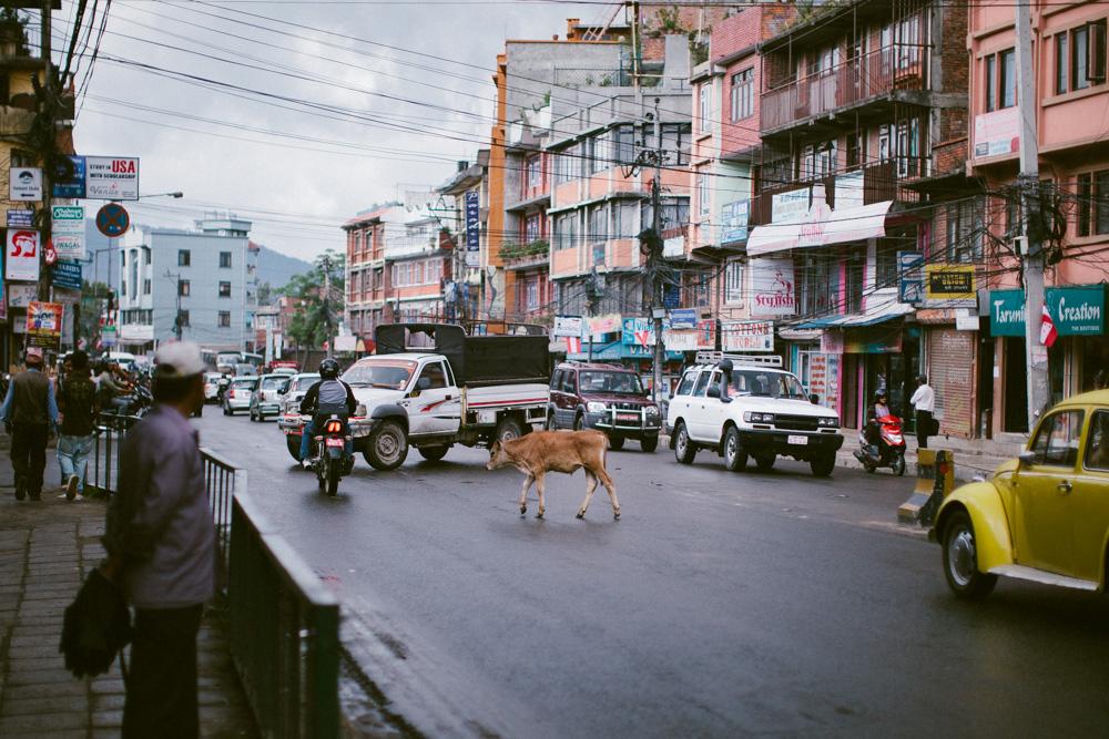 kathmandu_nepal_alecvanderboom (17 of 43).jpg
