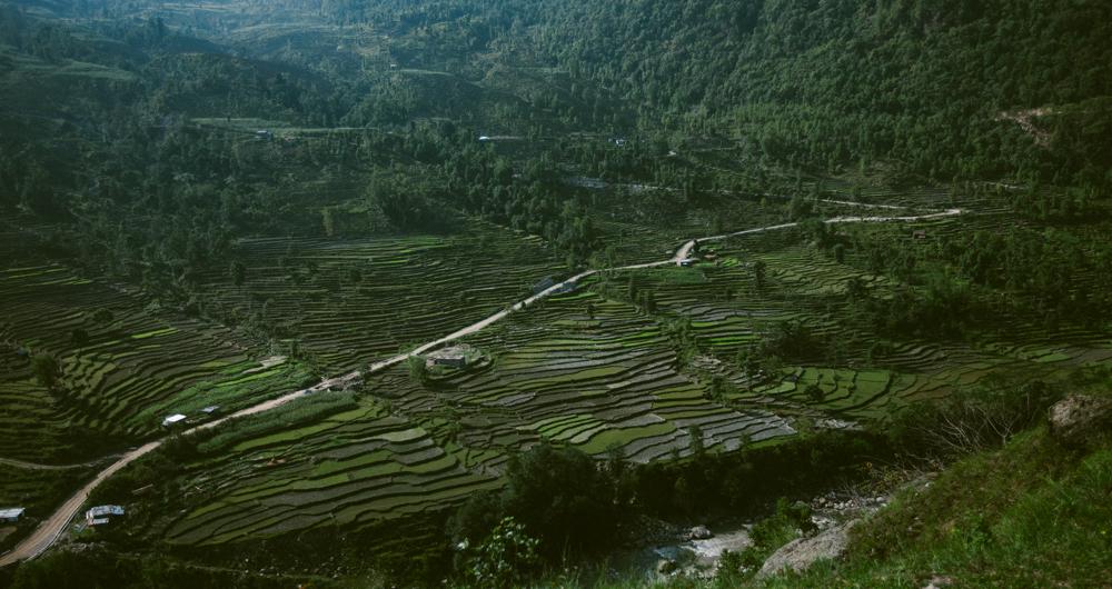 nepal_alecvanderboom_B (31 of 51).jpg