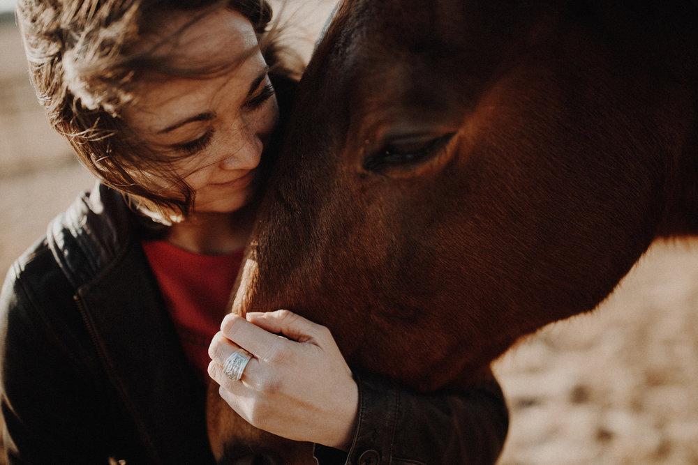 alec_vanderboom_horses_online-0007.jpg