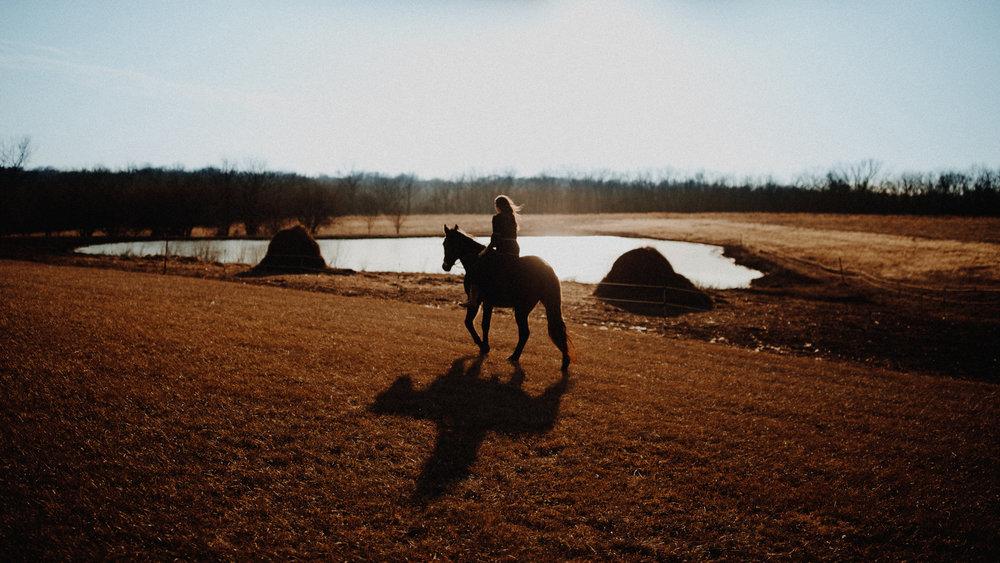 alec_vanderboom_horses_online-0008.jpg