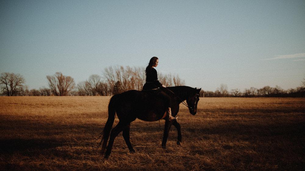 alec_vanderboom_horses_online-0011.jpg