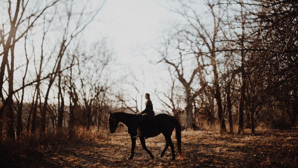 alec_vanderboom_horses_online-0013.jpg