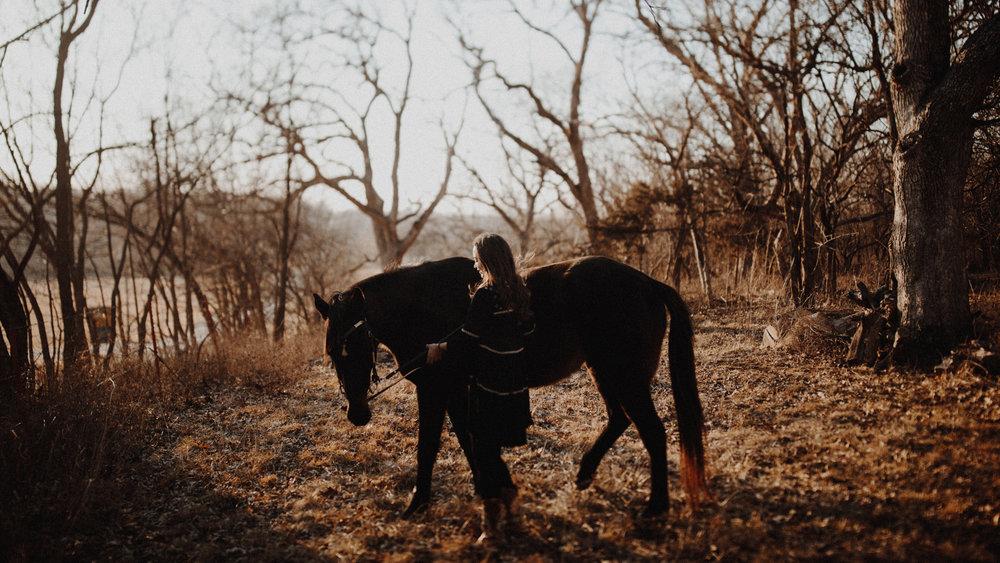 alec_vanderboom_horses_online-0016.jpg