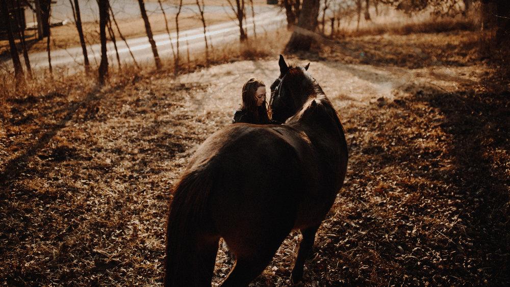 alec_vanderboom_horses_online-0017.jpg