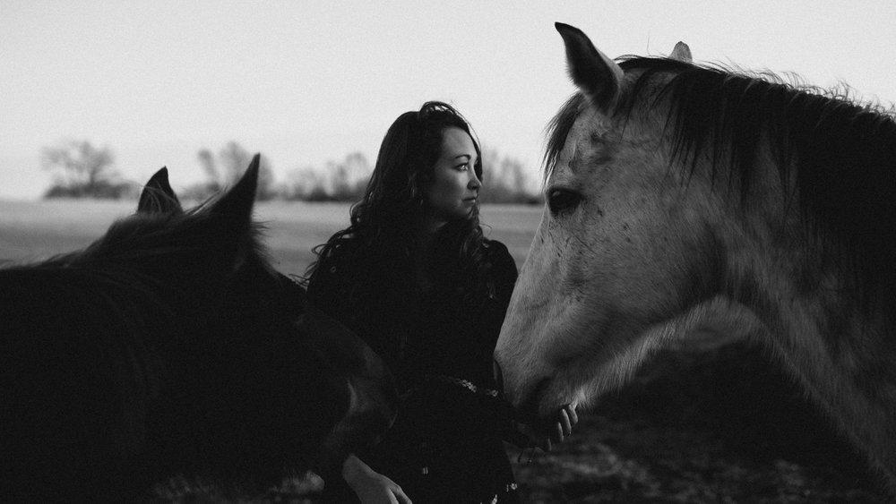 alec_vanderboom_horses_online-0031.jpg
