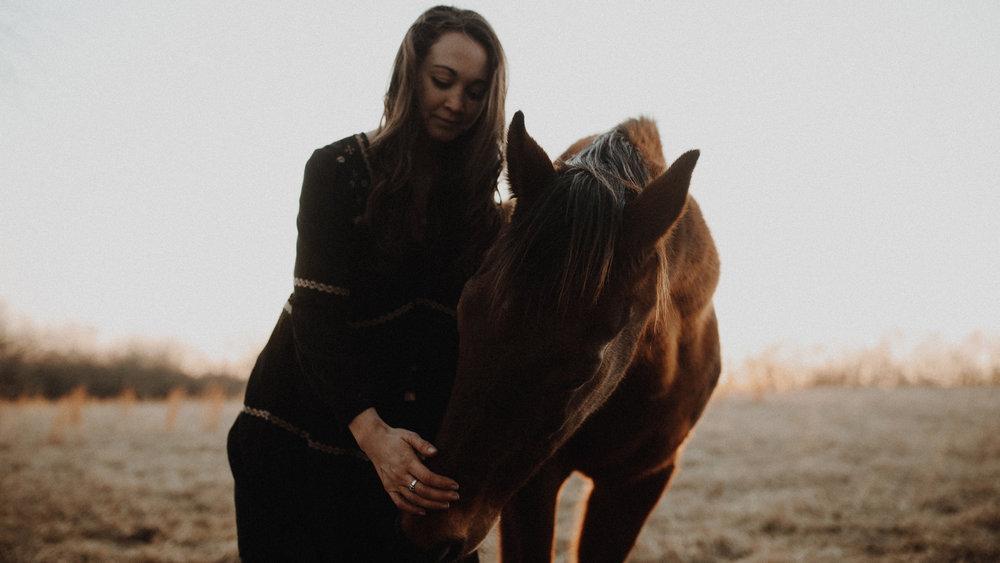 alec_vanderboom_horses_online-0034.jpg