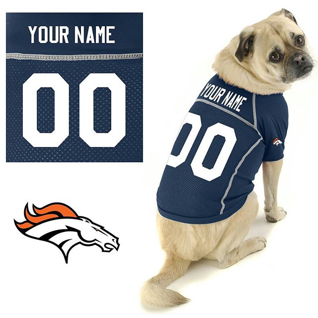 Bronco Bossy back in his modeling days 📷 #nfl #pugmodel #broncos #snugsamplesize #neckroll #doingitforthecheese #reallyaneaglesfan