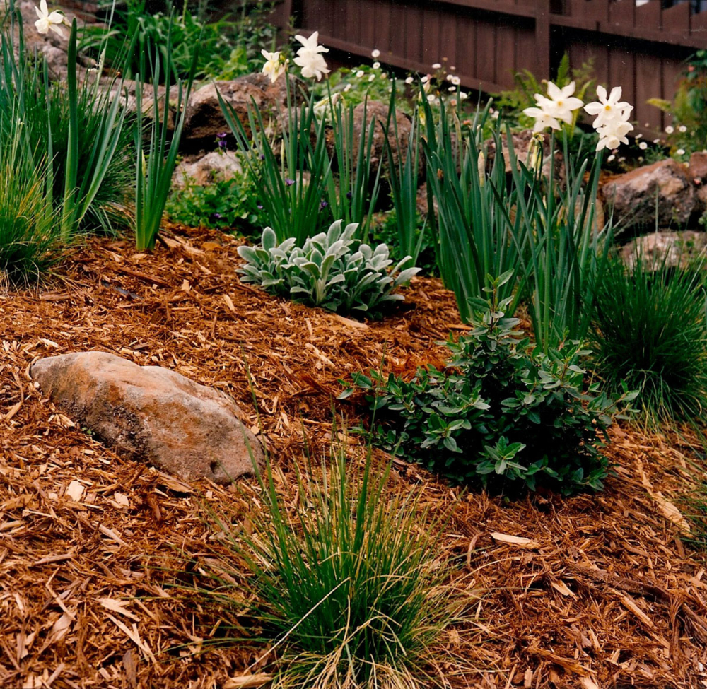 Clay Soils and Water — Gardening By Nature\'s Design