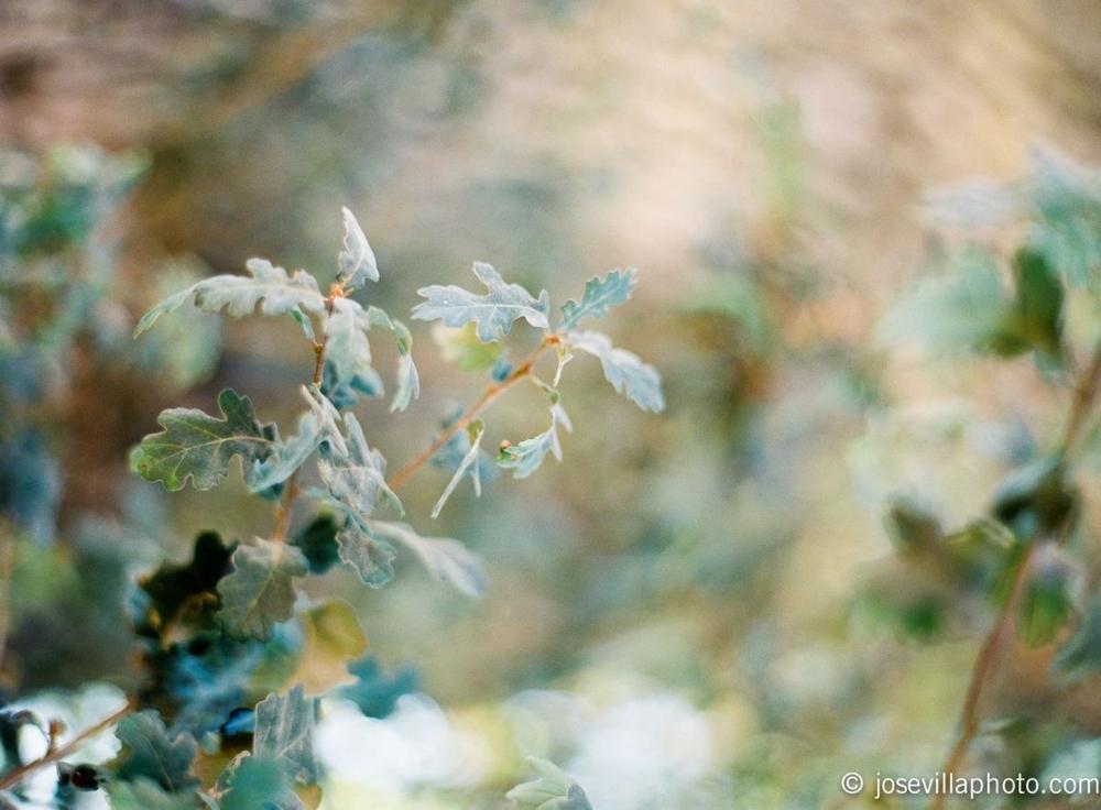 20111027-008609-r1-e007.jpg