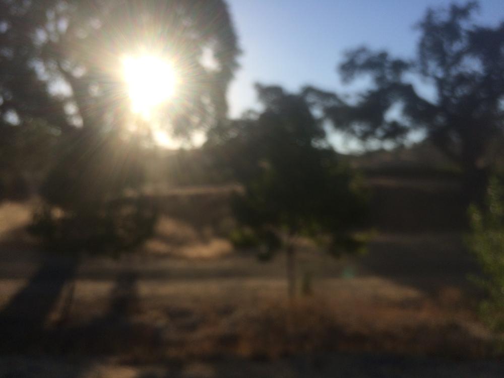 2014-09-17 07.53.25.jpg