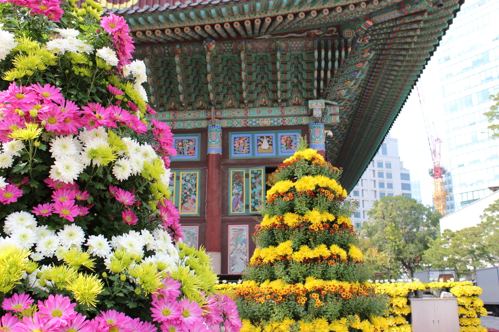 Jogyesa temple sits right in the center of Seoul