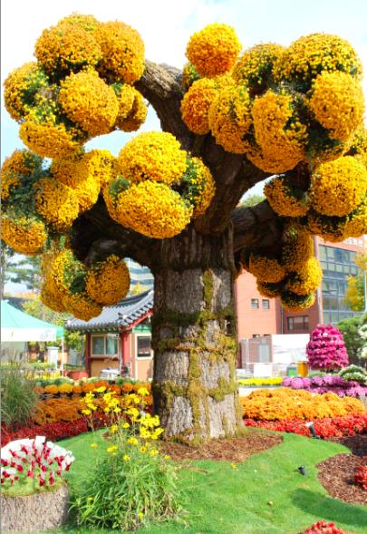 Yellow flower bulb tree
