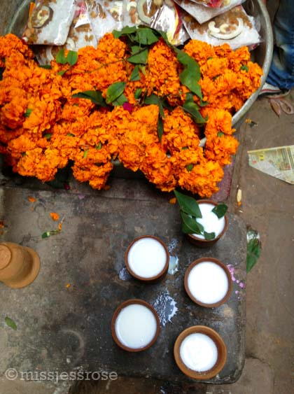 Flowers and milk for sale, offerings for the HIndu gods