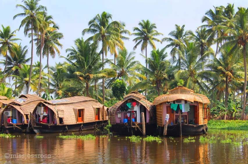 Docked houseboats on the backwaters in Alleppey, India