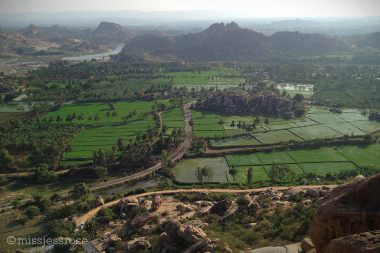 Perspective view of the rice paddies in Hampi