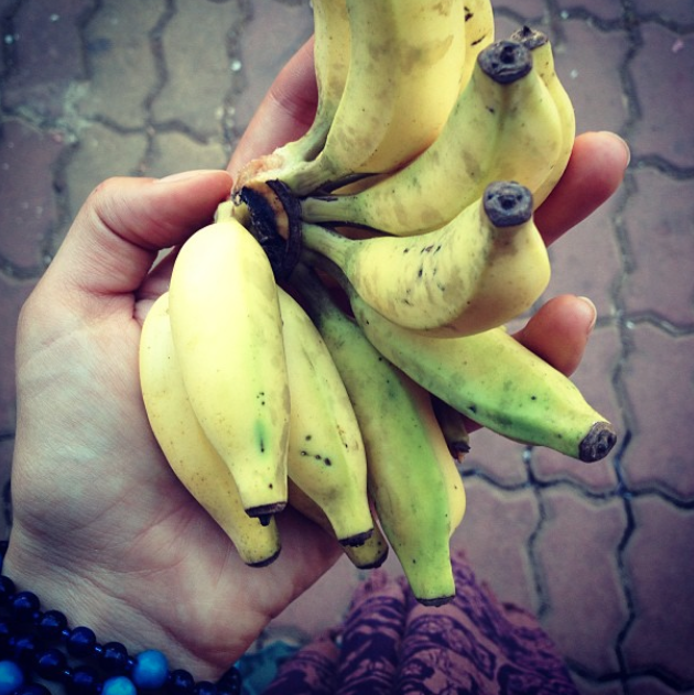 Mini bananas, Goa, India