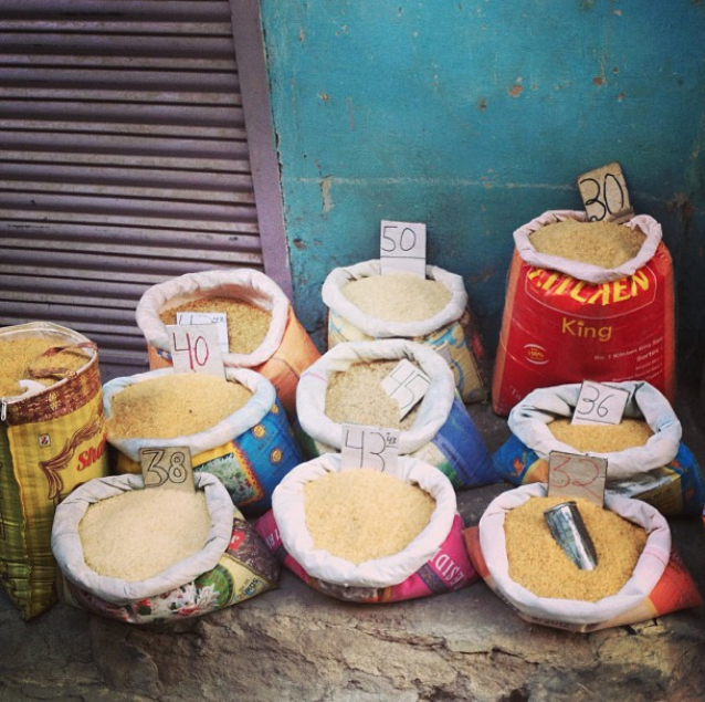 Rice, Jodhpur, India