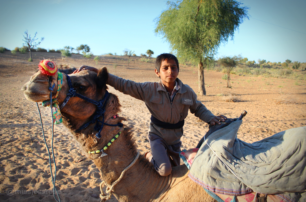Hello Lalu the camel.