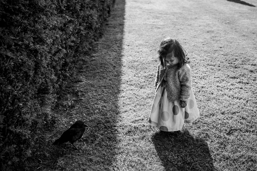 Flower girl at a wedding - flower girl and her crow - YSP wedding -