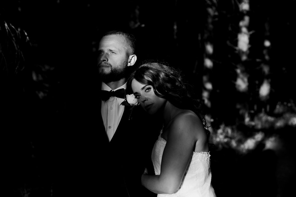 moody wedding pictures - Toronto wedding -