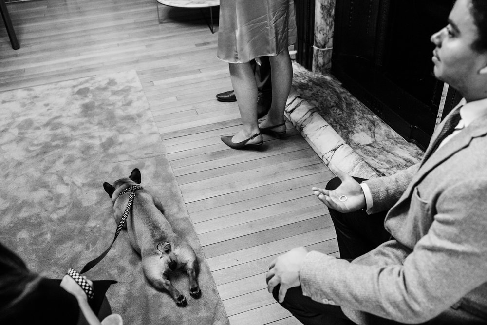 the feet of the bride and groom can be seen while the best man holds the rings and a french bulldog lays on the fllor asleep