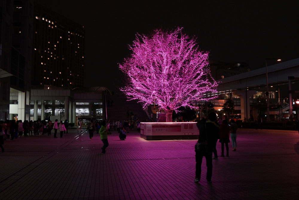 Pink tree just outside Fuji TV HQ, Odaiba
