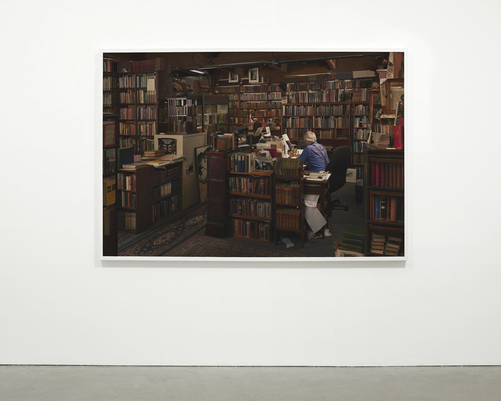 """Antiquarian Bookstore"", 2015 - 2016  54 x 78.5 in. (137.15 x 199.39 cm)"