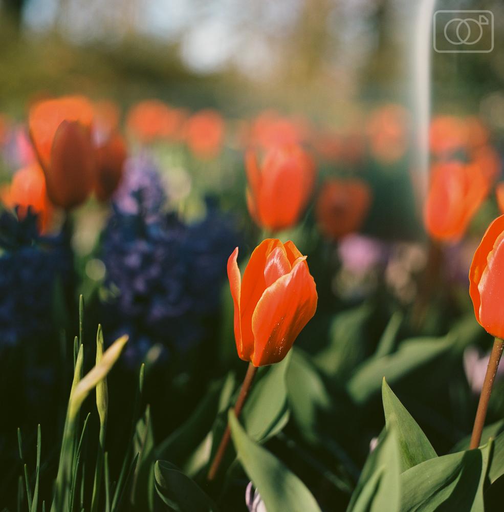 travelphotography-000051440006.jpg