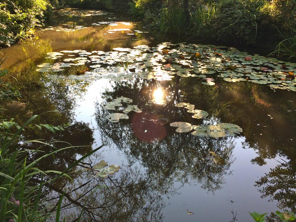 Chichu Garden