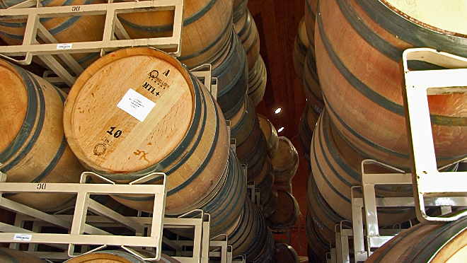 A look inside a sonoma winery