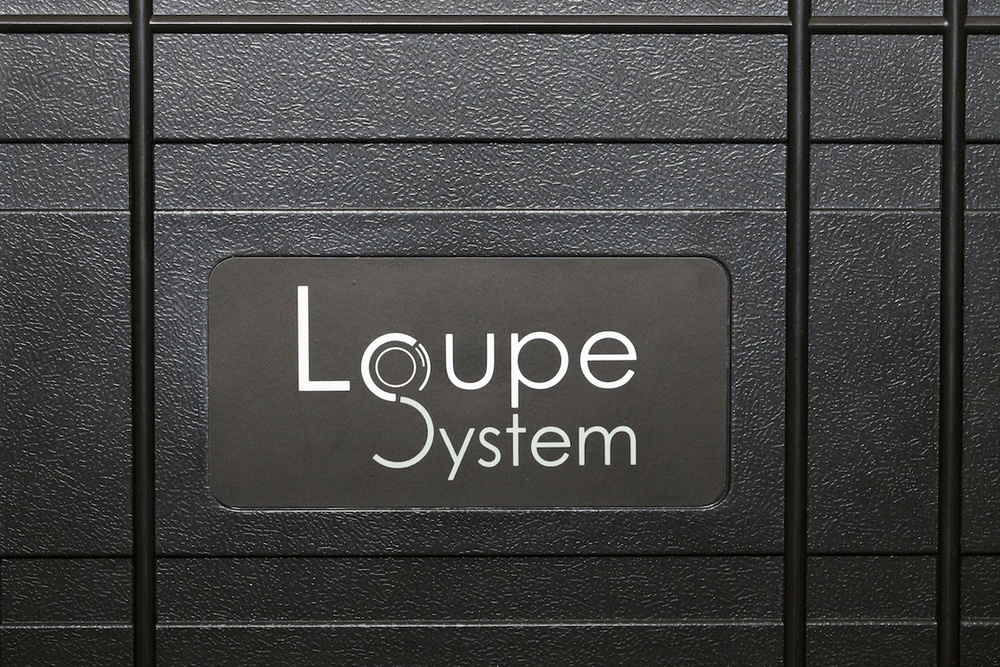 Loupe System