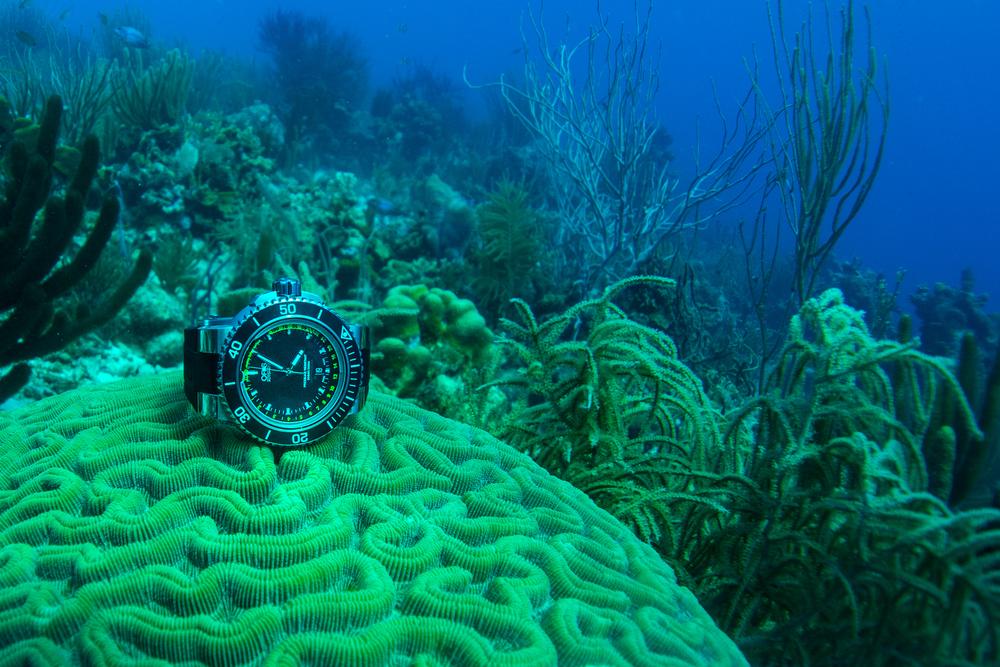 The Aquis Depth Gauge at 13 meters under the Caribbean (photo credit: Gishani Ratnayake)