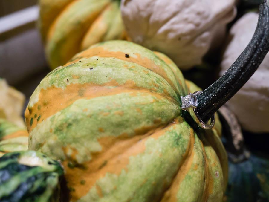 19-10-14_KristinPatrickEngagement57-357.jpg