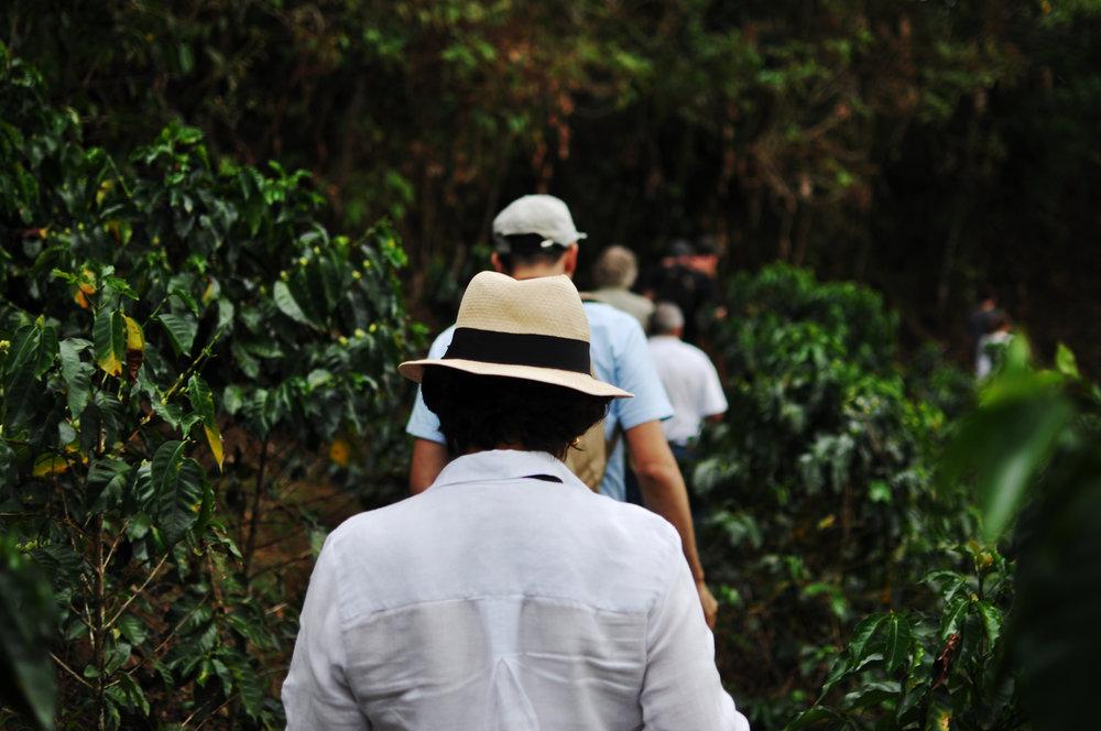 Colombia 2016 55.jpg