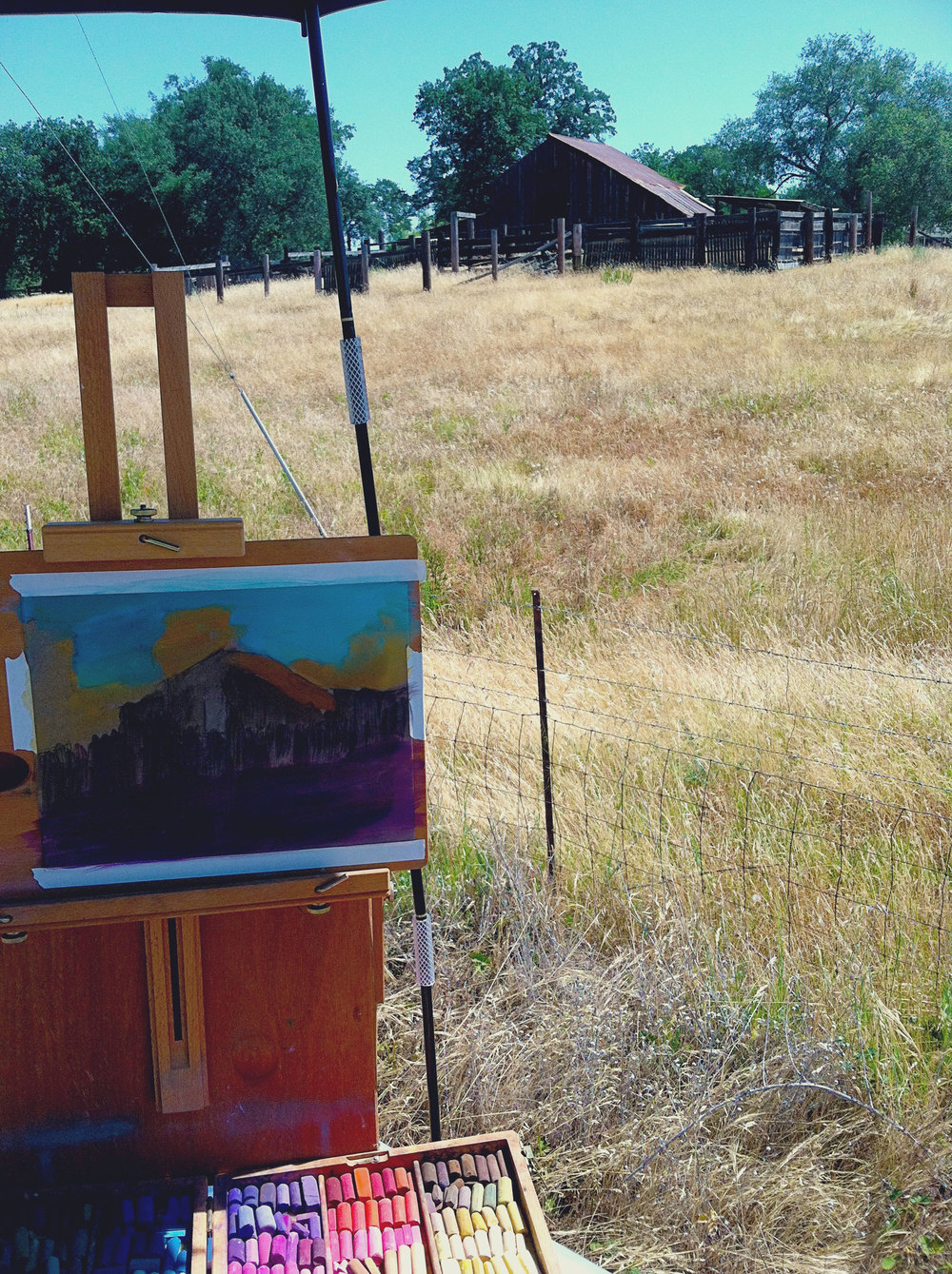 My plein air painting setup