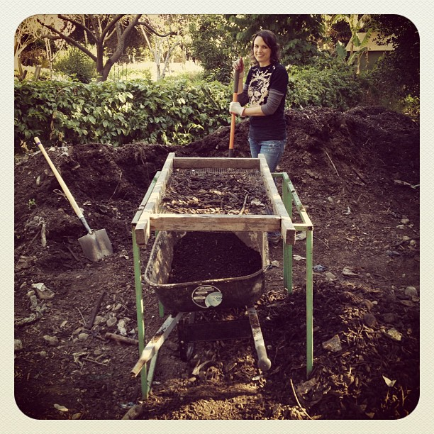 Sifting compost at the Scripps College Farm. Thanks for the free dirt! (Taken with  Instagram  at The Farm Organic Garden Scripps College)
