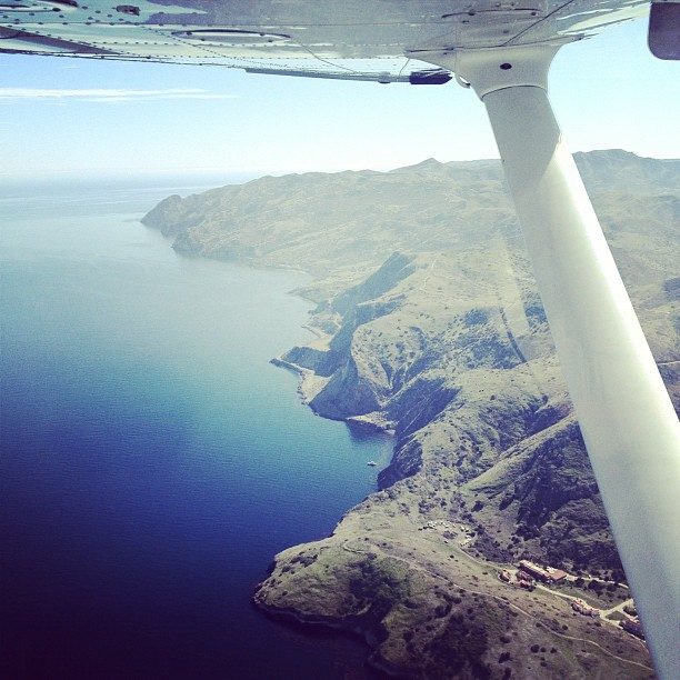 Catalina (Taken with  instagram )