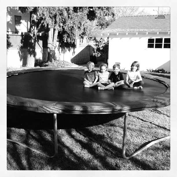 This scene lasted for about 5 seconds. New trampoline! (Taken with instagram)