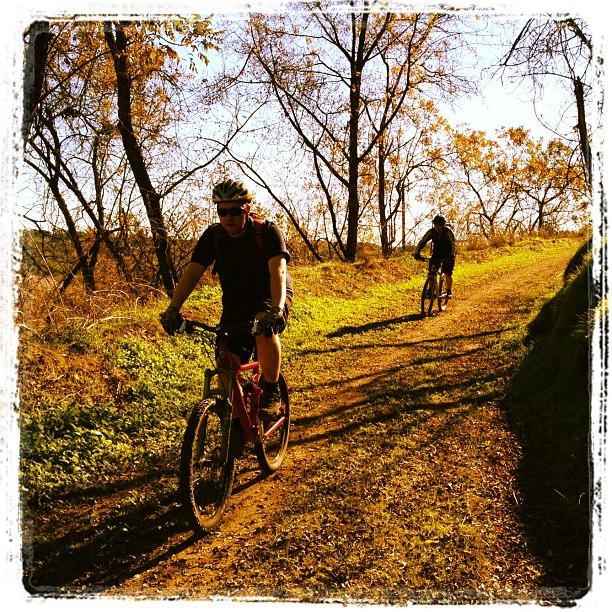 Bonelli Park trail (Taken with  instagram )