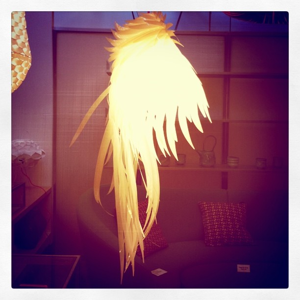 Mullet lamp (Taken with instagram)
