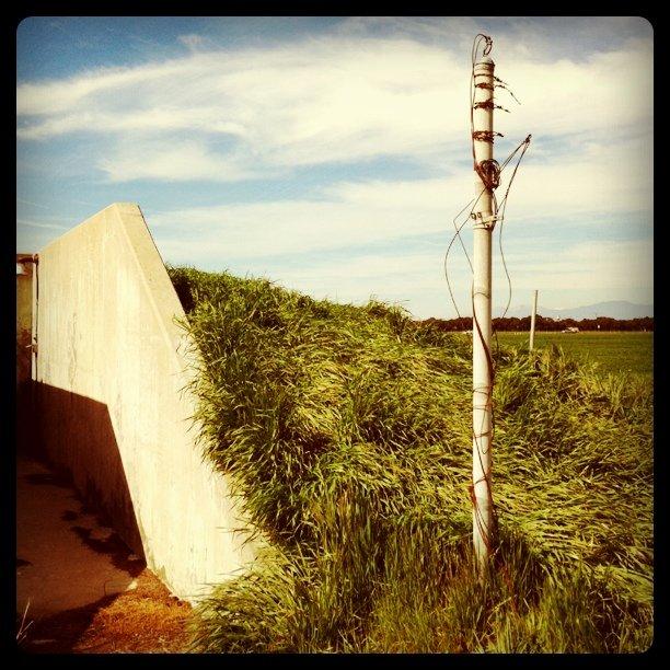 Bunker (Taken with  instagram )