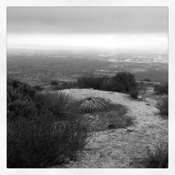 Top of Potato Mountain (Taken with  instagram  at Claremont Hills Wilderness Park)