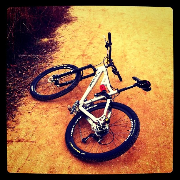 Transition (Taken with instagram at Claremont Wilderness Trail)