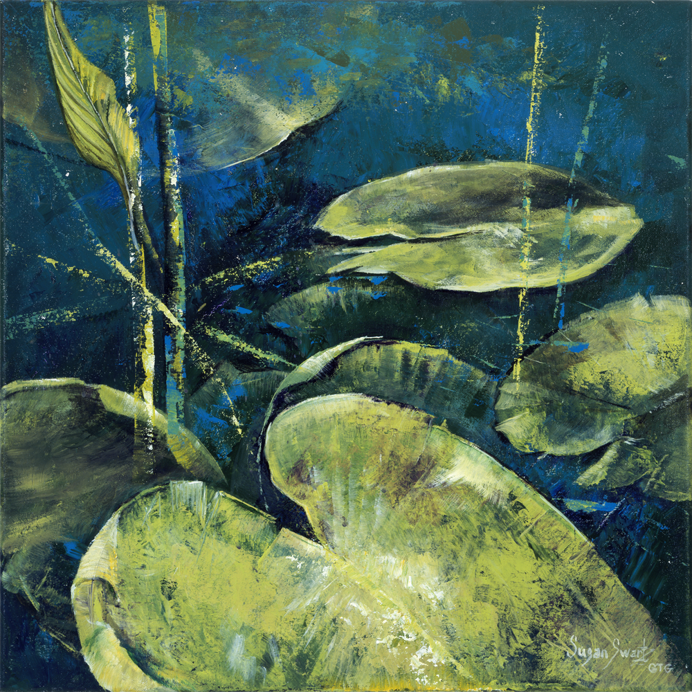 Water Lilies 5