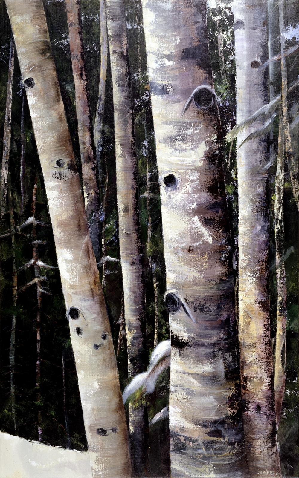 Pine Splendor 30x48.png