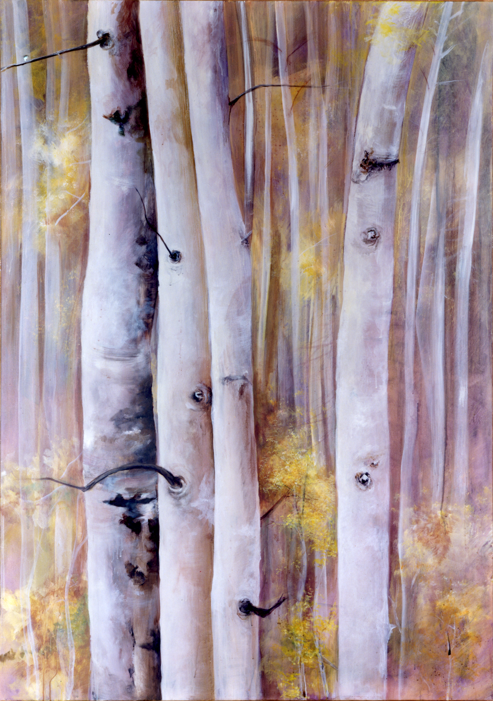 In the Aspens.png