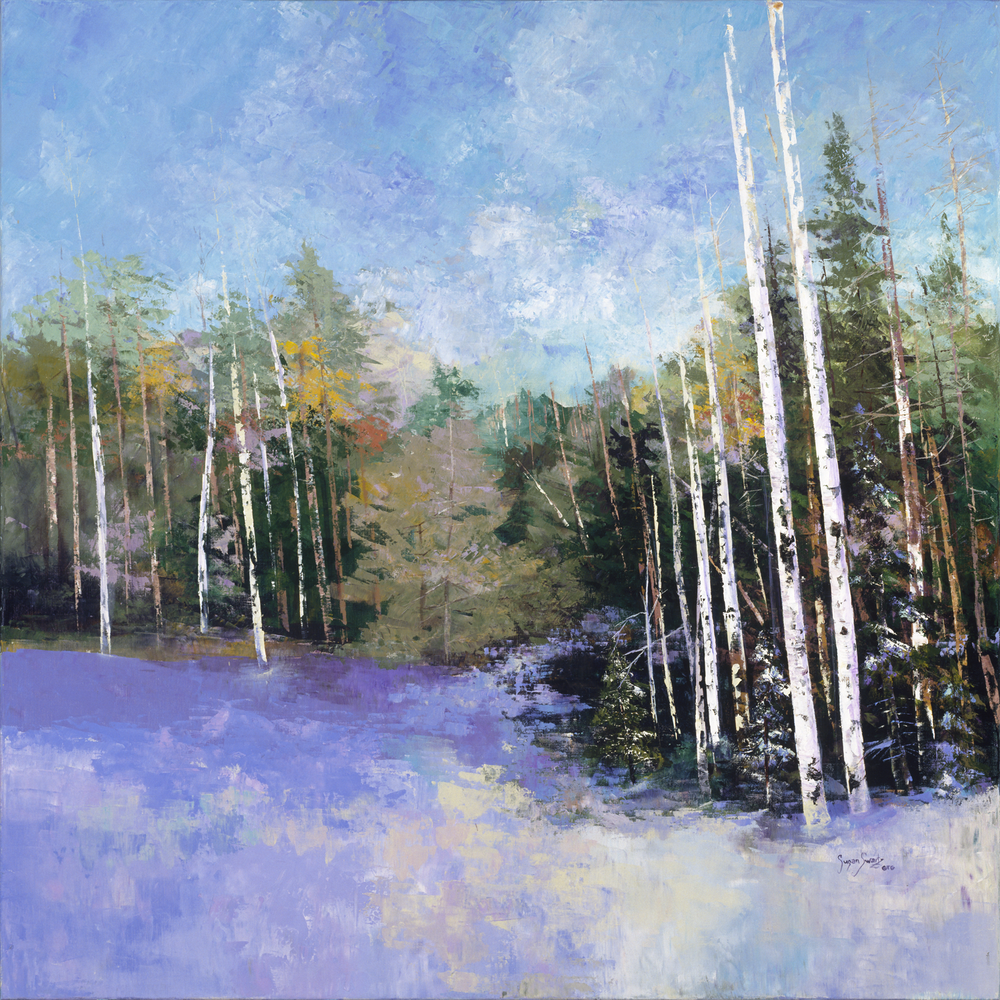 Evergreens Amid Aspens 48x48.png