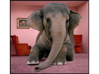 elephant-room11.jpg